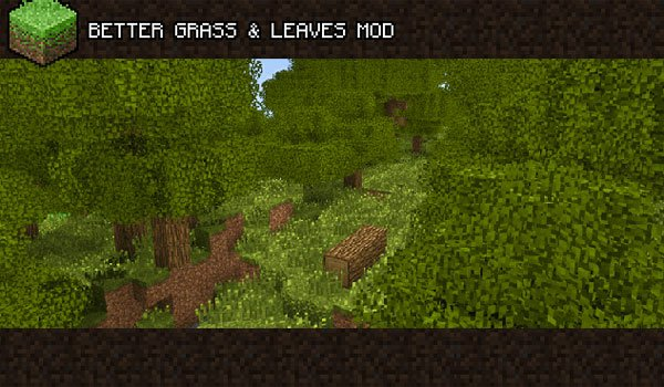 image where we can see the foliage of herbs added mod better grass and leaves 1.6.4