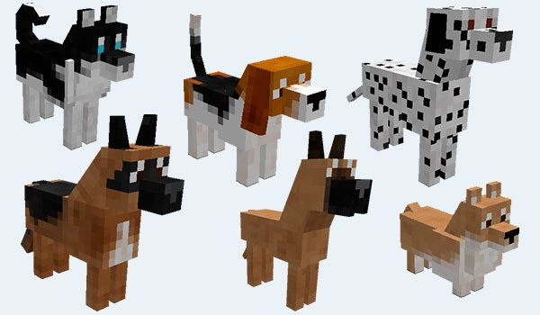 example where we can see the different breeds of dogs adds doggstyle mod 1.8.9 and 1.7.10.